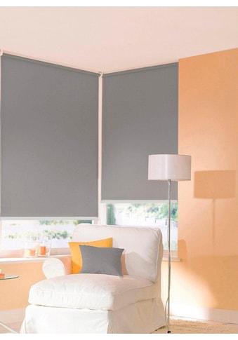 sunlines Seitenzugrollo nach Maß »Start-up Style uni«, Lichtschutz, ohne Bohren, freihängend, Made in Germany kaufen