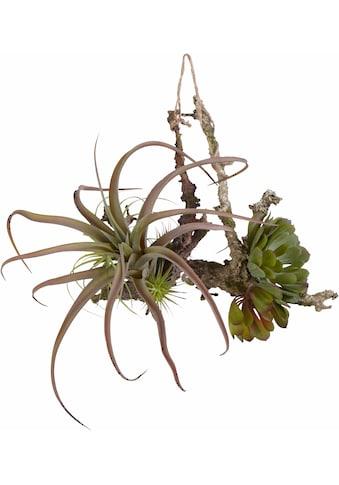 Creativ green Kunstranke (Set, 2 Stück) kaufen