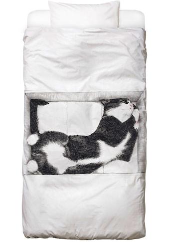 Juniqe Bettwäsche »Katze im Karton«, In vielen weiteren Designs erhältlich kaufen