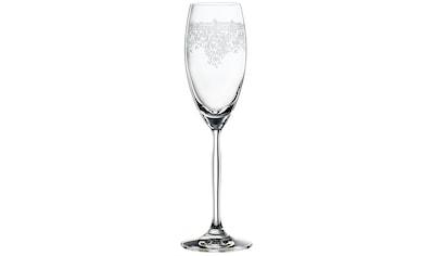 """SPIEGELAU Champagnerglas """"Renaissance"""" (12 - tlg.) kaufen"""